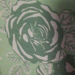 LuLaRoe Dresses - Lularoe XL mint green rose jessie
